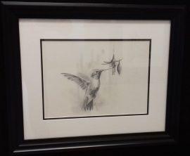 Hummingbird Study - Original