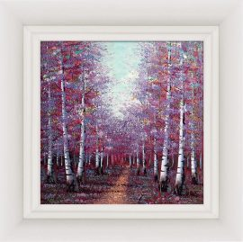 Season of Light by Inam
