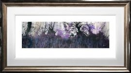 Bluebells Galore by Sue Howells
