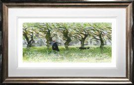 Windy Walkers by Sue Howells