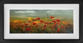 Poppy Sunset Original by Kimberley Harris