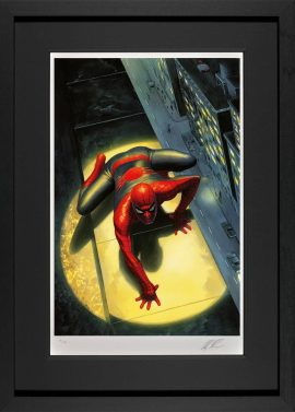 The Spectacular Spiderman by Alex Ross