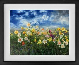 Spring by Kimberley Harris